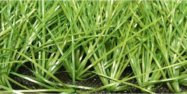 искусственная трава 60ХМ