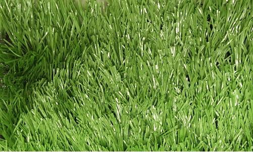 искусственная трава FAN40